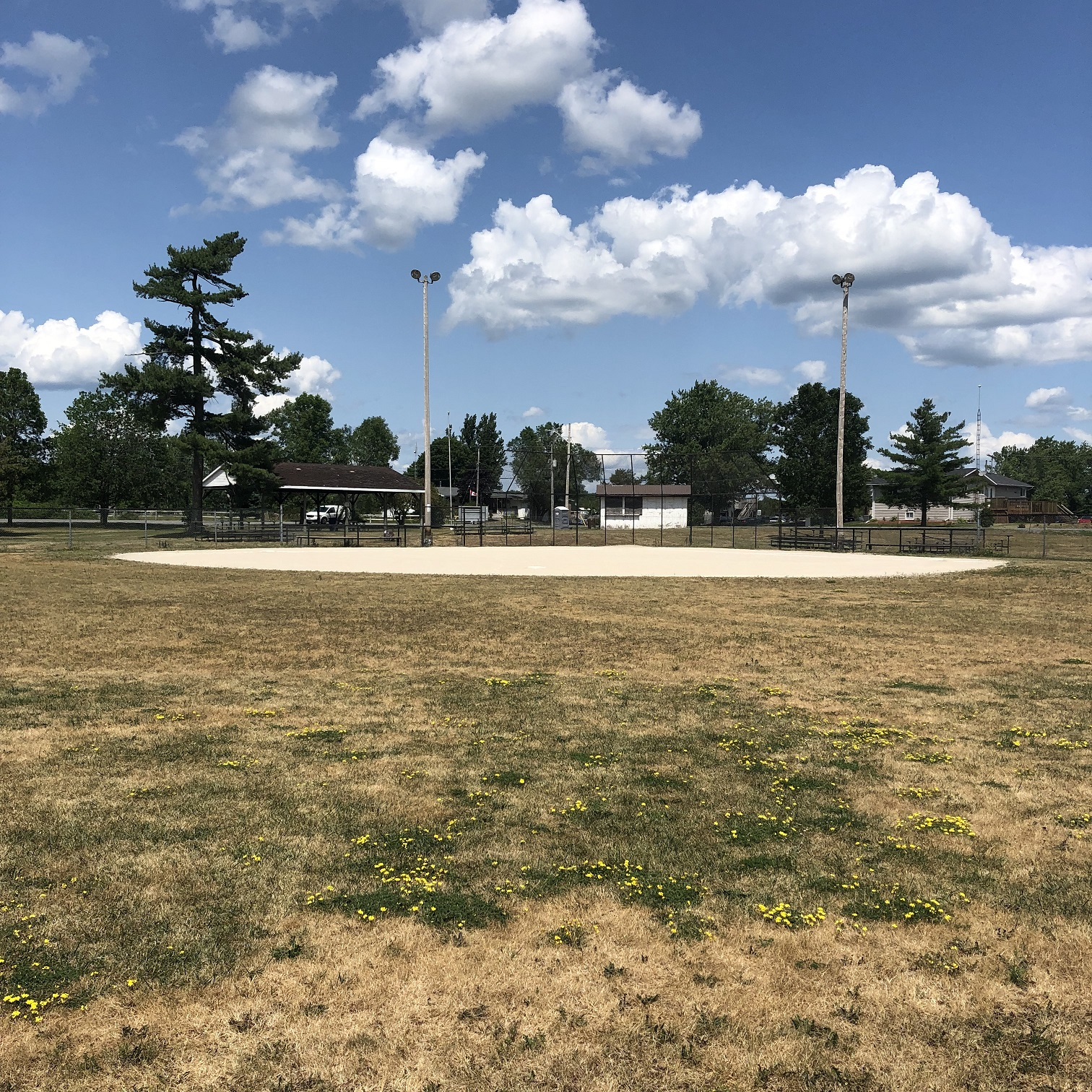 roblin ball diamond